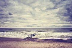 Farbe tonte Bild eines leeren Strandes Lizenzfreie Stockfotografie
