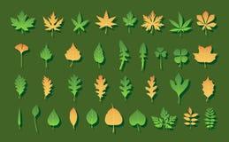 Farben-Blätter Lizenzfreie Stockbilder