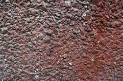 Farben der Beschaffenheitsbetonmauer-neutralen Person Lizenzfreie Stockfotografie