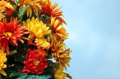 Farben der Fall-Blumen lizenzfreies stockfoto