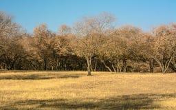 Farben in der Landschaft Lizenzfreies Stockfoto