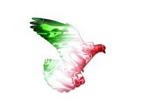 Farben der mexikanischen Flagge auf einem Schattenbild einer Taube Lizenzfreie Stockfotografie