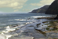 Farben der Oregon-Küste Stockfotos