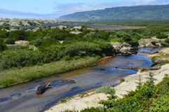 Farben der Oregon-Küste Lizenzfreies Stockbild