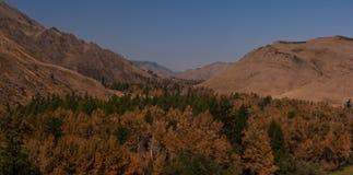 Farben des Herbstes Tuwa Lizenzfreie Stockbilder