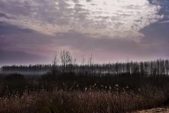 Farben des Winters Stockfotografie
