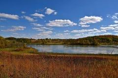 Farben eines Waldes im Herbst Lizenzfreie Stockfotos