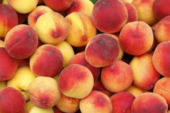 Farben in Frucht Feige Lizenzfreies Stockfoto