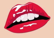 Farben-Lippen Lizenzfreie Stockfotos