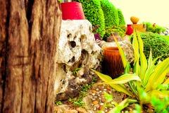 Farben schauen frisch lizenzfreies stockfoto
