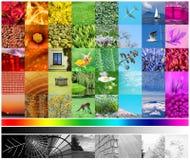 Farben-Spektrum Lizenzfreies Stockbild