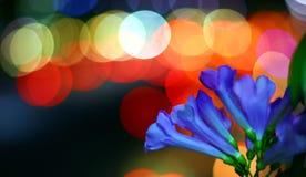 Farben und bokeh lizenzfreies stockfoto
