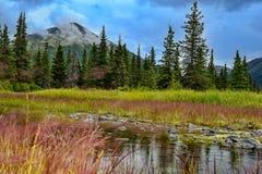 Farben von Alaska Stockbild
