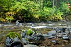 Farben von Cispus-Fluss Lizenzfreies Stockfoto