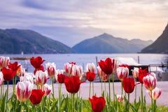 Farben von Lugano lizenzfreies stockfoto