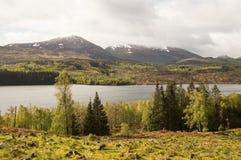 Farben von Schottland lizenzfreies stockbild