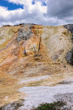 Farben von Yellowstone Nationalpark Lizenzfreie Stockfotografie