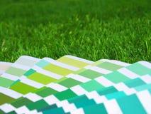 Farbenanleitung im Gras Lizenzfreie Stockbilder