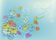 Farbenblumen auf Blau Stockfoto