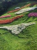 Farbenfrohe Landschaft στο der Natur Στοκ Φωτογραφία