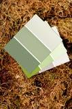 Farbenlackchips auf einem Mooshintergrund Lizenzfreie Stockbilder