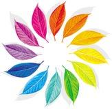 Farbenrad Lizenzfreie Stockfotografie