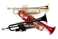 Farbentrompeten Stockfoto