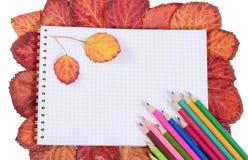 Farbige Bleistifte mit einem Notizbuch und Herbstlaub Lizenzfreies Stockfoto
