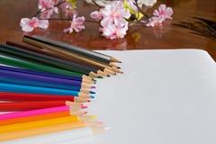 Farbige Bleistifte und Blumen auf Tabelle Stockfoto