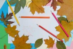 Farbige Bleistifte und Notizblock Lizenzfreie Stockfotos