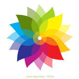 Farbige Blume über weißem Hintergrund Stockfotografie