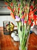 Farbige Blumen in einem Vasenblühen Stockfotos