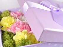Farbige Blumen im Lavendelkasten Lizenzfreie Stockfotos
