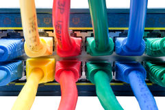 Farbige Ethernet-Seilzüge angeschlossen an Nabe Stockbilder