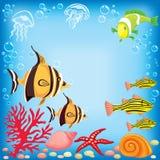 Farbige Fische unter Wasser lizenzfreie abbildung