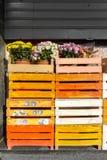 Farbige hölzerne Kisten mit Blumen auf die Oberseite Lizenzfreies Stockfoto