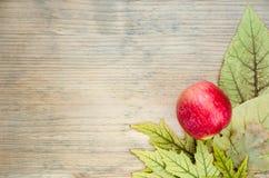 Farbige Herbstpostkarte - Ecke verziert mit reifem rotem Apfel auf gelbem Herbstlaub Hölzerner Hintergrund Stockfotografie