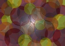Farbige Kreise Stockfotos