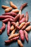 Farbige Süßkartoffel stockbilder