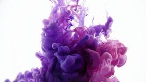 Farbige Tinte, die in farbigem Rauche des Wassers, Überschneidungsrahmen von der Spitze nach unten verbreitet Guter Vorhang-ausse stock video