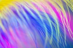 Farbiger abstrakter Hintergrund der Federn Stockfotos