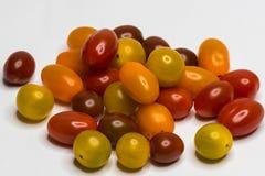 Farbiger Cherry Tomato Getrennt lizenzfreie stockbilder