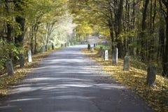 Farbiger Herbst und eine alte Straße Stockfotos