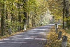 Farbiger Herbst und eine alte Straße mit Meilensteinen Lizenzfreie Stockfotografie