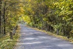 Farbiger Herbst und eine alte Straße mit Meilensteinen Stockbilder