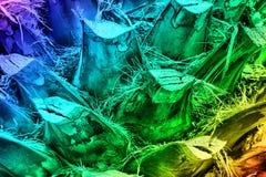 Farbiger Hintergrund Ein Fragment des Stammes einer Palme Lizenzfreie Stockfotos