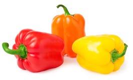 Farbiger Paprika lokalisiert auf weißem Hintergrund Stockbild