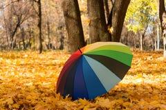 Farbiger Regenschirm Lizenzfreies Stockbild