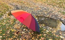 farbiger Regenschirm auf Herbstlaub Lizenzfreie Stockbilder