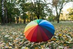 farbiger Regenschirm auf Herbstlaub Lizenzfreies Stockfoto